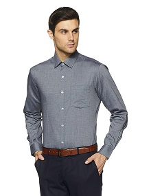Arrow Plain Slim Fit Formal Shirt (Grey)